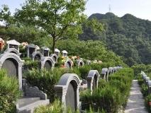 九公山公墓军纪念园96800传统墓