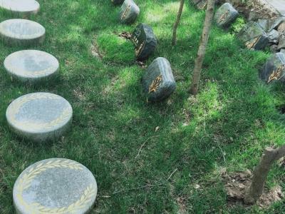 九公山树葬20800元